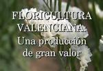 Floricultura Valenciana